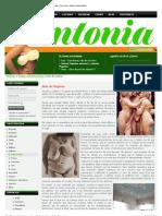 Arte de Mujeres - LRM Performance - Antonia Magazine