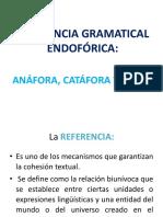 Anáfora catáfora y elipsis.pdf