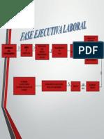 esquema face ejecutiva laboral.pdf