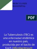 Tuberculosis Urogenital - Copia
