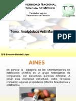 AINES descarga.pdf