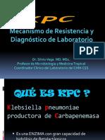 3k Pneumoniaekpc 111206081850 Phpapp01
