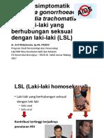 IMS in LSL.pdf