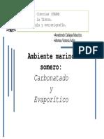 Carbonatados13-2