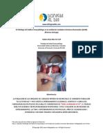 El-Fonoaudiologo-en-la-Unidad-de-Cuidados-Intensivos-Neonatales.pdf
