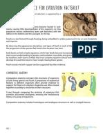 evidence-for-evolution-factsheet-v2