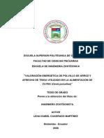 TESIS POLVILLO DE AROOZ.pdf