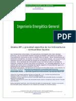 api_gravespecifica_correc.xtempdocx.pdf