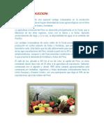 Situacion de la Produccion Regiona de Frutas.docx
