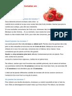 Cultiver Les Tomates en CI