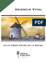 Desobediencia Vital - Julio Payan Gomez