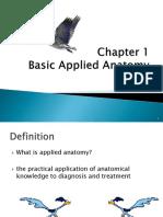 2) Basic Applied Anatomy