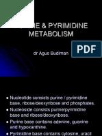 Purine & Pyrimidine Metabolism