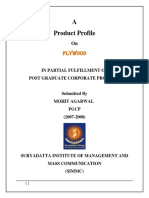 Company Report on Ply - 123.docx