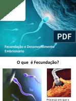 Fecundação e Desenvolvimento Embrionário