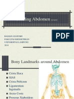 Dinding Abdomen Review 2014