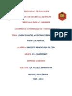Plantas Medicinales Gastritis MINDIOLAZAdocx