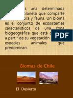 14.- Biomas y Sucesión Ecologica 2014 (1)