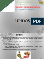 LIPIDOS.ppt