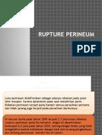 Ppt Rupture Perineum
