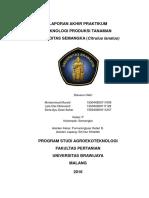 laporan TPT