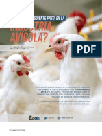 ¿Cuál es el siguiente paso en la industria avícola?