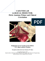 1. Cadaver Lab Anatomy Primer Updated 4 2014