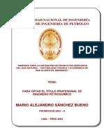 GAS CON EVALUACION COSTOS.pdf