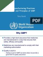 1 3 GMP Purpose Principles Guidelines