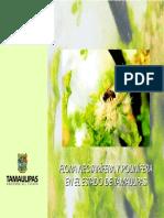 Flora Tamaulipas.pdf