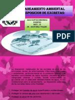 disposiciondexcretassaneamiento-140415131028-phpapp01.pptx