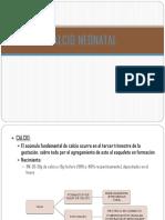 expo hipocalcemia.pptx