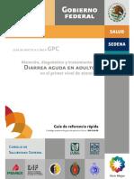SSA_106_08_GRR.pdf