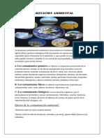CONTAMINACION AMBIENTAL (1).docx