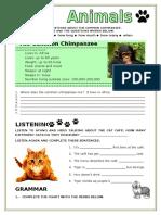 Animals Simple Present Grammar Guides Picture Description Exercises Tests 74172