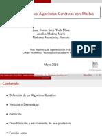 introduccion_a_los_algoritmos_geneticos_con_matlab.pdf