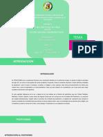 Zambrano_Holger.pdf