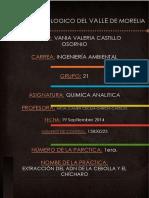 1practica_extraccion_del_ADN_de_la_cebol.docx