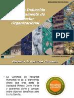 Inducción Bienestar Organizacional