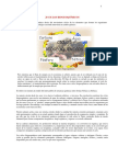 20 ciclos biogeoquímicos