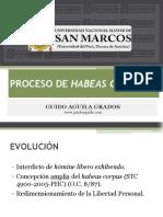 HABEAS CORPUS GUIDO AGUILA.pdf