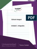 Unidad 1. Integrales.pdf