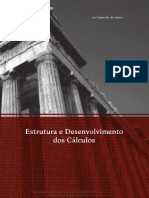 ESTRUTURA E DESENVOLVIMENTO DOS CÁLCULOS.pdf