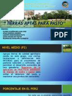 APTA PARA PASTOS NIVEL MEDIO (P2).pptx