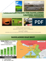 Challenges Facing the Bangladesh Leather Industry LFMEAB
