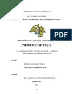 Informe de Tesis