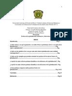 Monografia de Globalización (1)