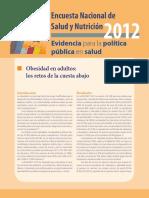 5.-ObesidadAdultos.pdf