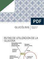 5. Glucólisis