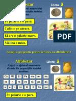 alfabetar.palarie